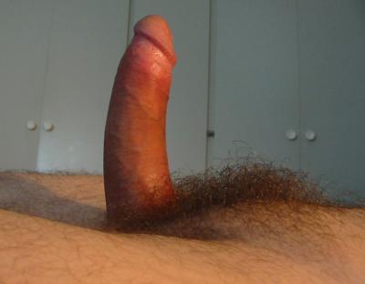 Стоячий волосатый член 18 фото