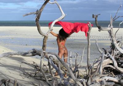 Темнокожая девушка гулят на берегу моря 17 фото