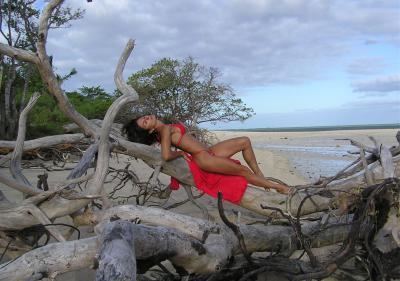 Женщина-спортсменка отдыхает на дереве 15 фото